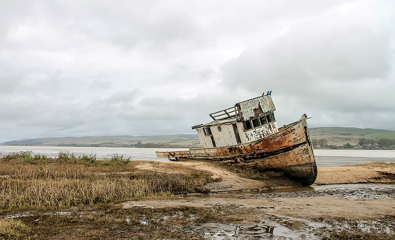 Brown boat on seashore during daytime