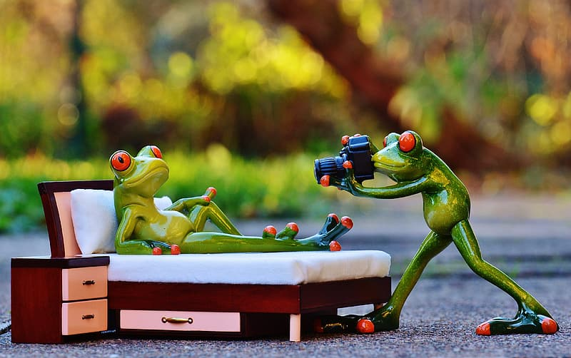 Focus photography of two red-eyed frog taking picture figurines