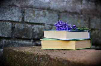 Purple flowers on top of blue and green covered books