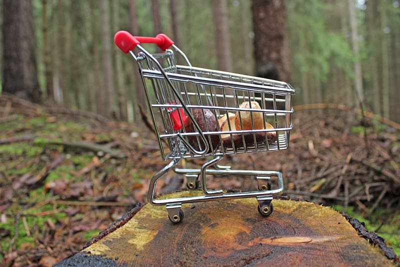 Selective focus photography of small shopping cart on top of wood slab