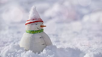 Snowman figure on snow