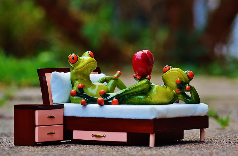 Selective focus photo of two green frog ceramic figurines on brown wooden bed near nightstand miniatures