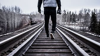 Person standing on railroads in middle of pine trees during daytime