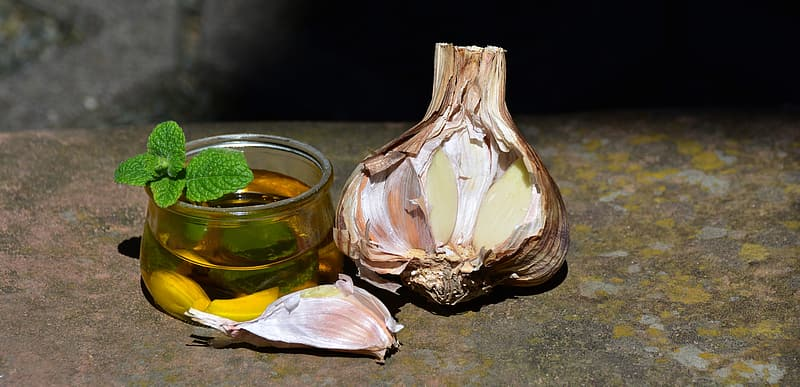 Garlic bulb beside glass cup on gray concrete