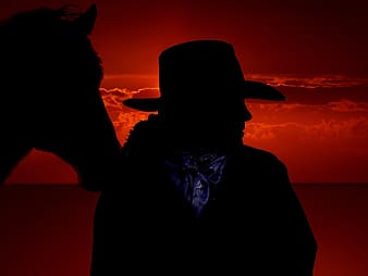 Silhouette of cowboy beside horse