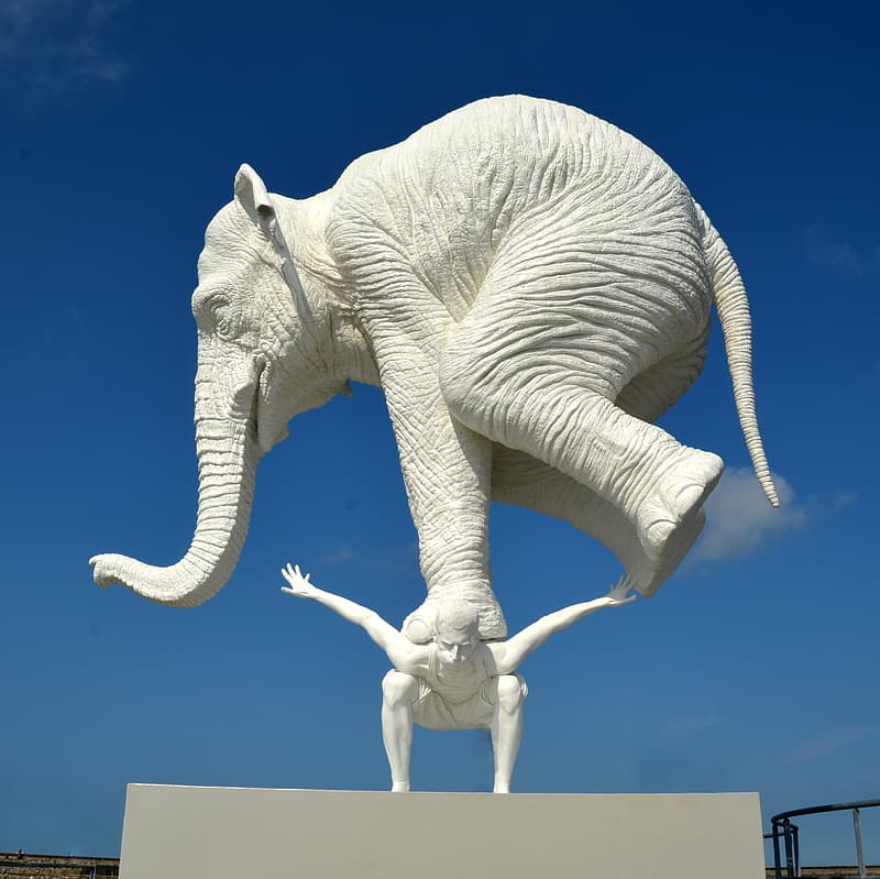 White elephant statue under blue sky during daytime