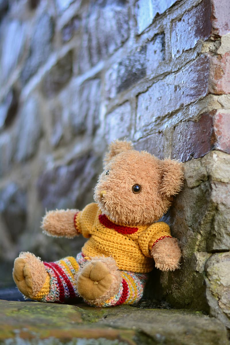 Yellow dressed bear on the brown brick wall