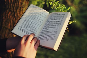 Person holding book under the tree
