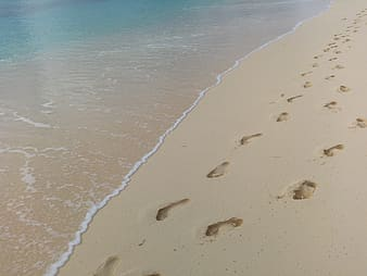 Foot trails in beach sand