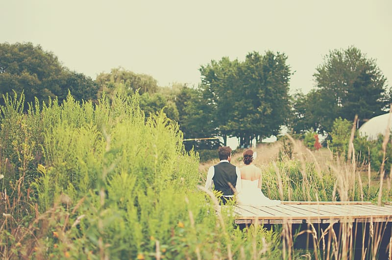 Couple sitting on brown wooden bench surrounded by green grass during daytime