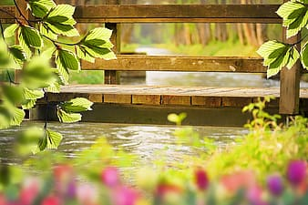 Brown wooden bench on water