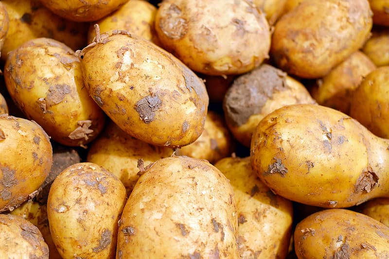 Closeup photography of brown potatoes