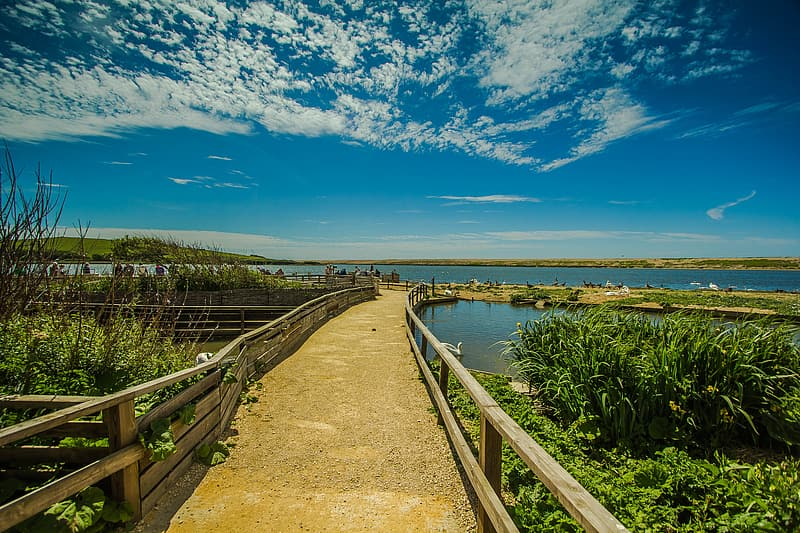 Brown wooden bridge over the sea under blue sky during daytime