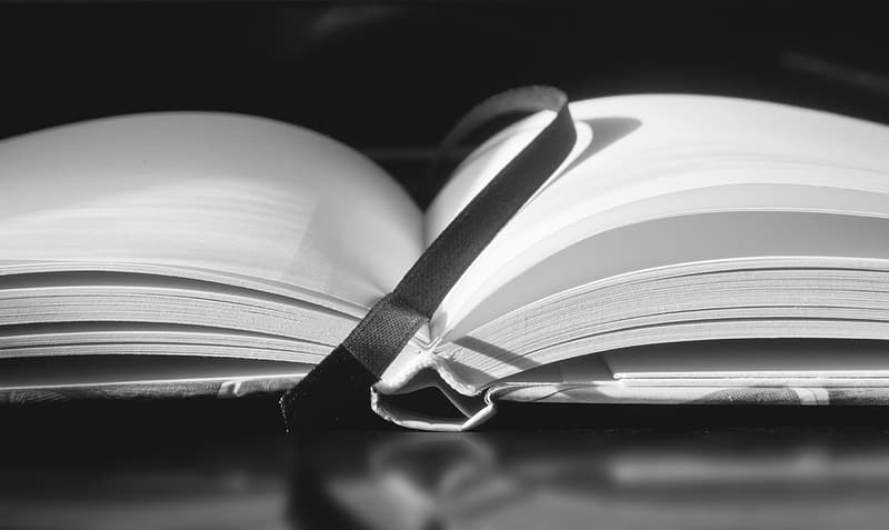 Greyscale photography of bookpage