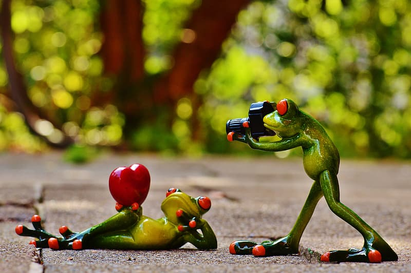 Selective focus of two frog figurines formed with photography session