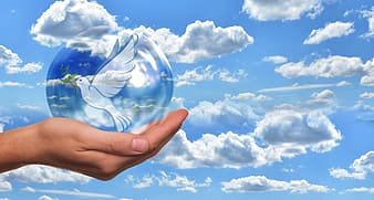 Person holding clear glass ball under blue and white cloudy sky during daytime