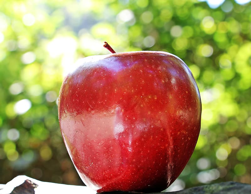 Closeup photo of red apple