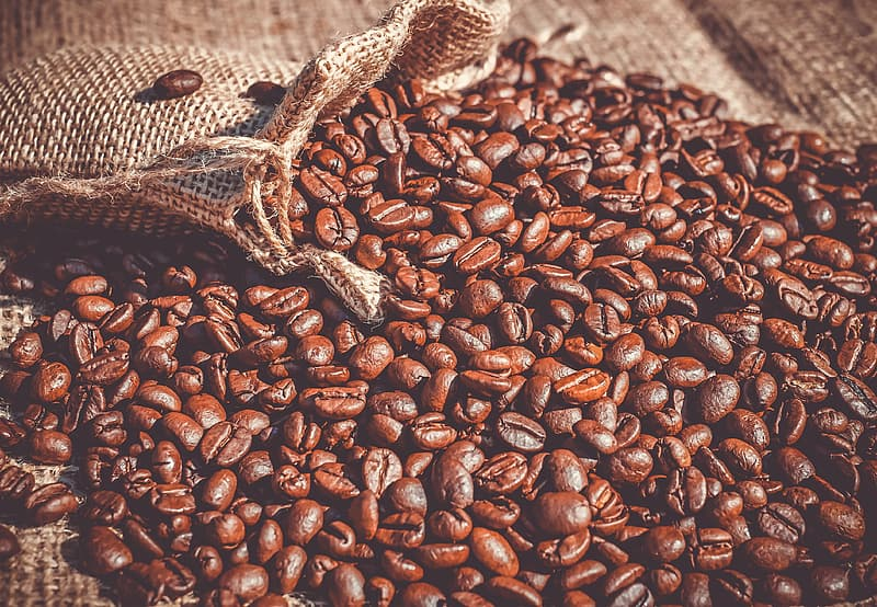 Brown coffee beans on brown textile