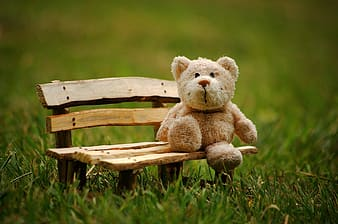 Brown bear plush toy sitting on brown wooden bench miniature photo