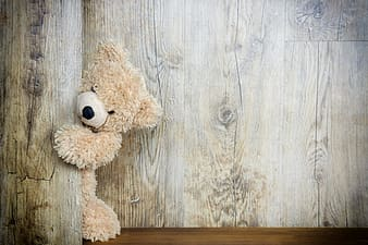 Brown teddy bear on brown wooden surface