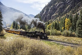 Black train on rail near green trees and mountain during daytime