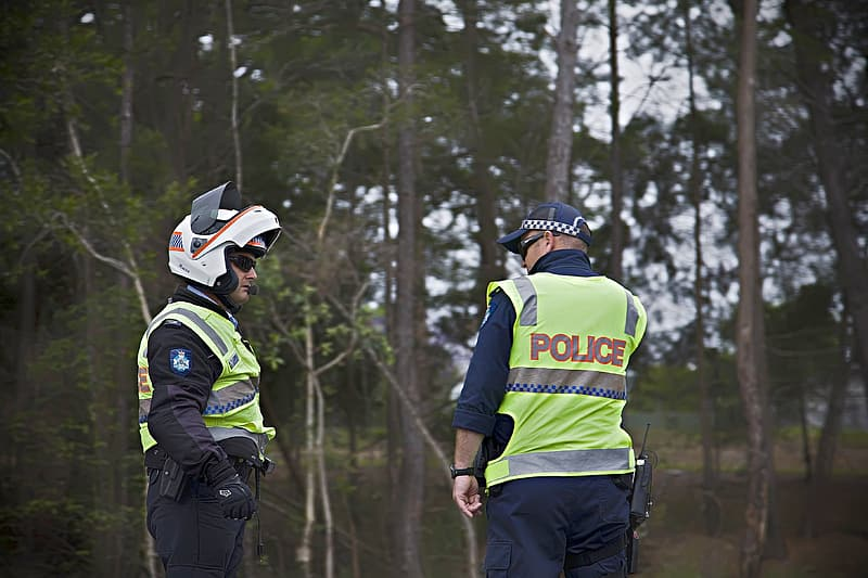 Two police officers standing near woods