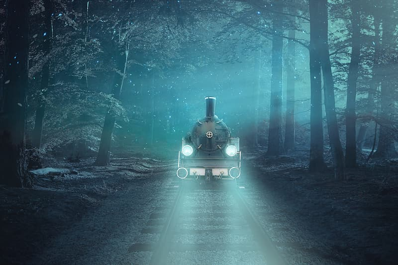 Black train in the middle of the forest