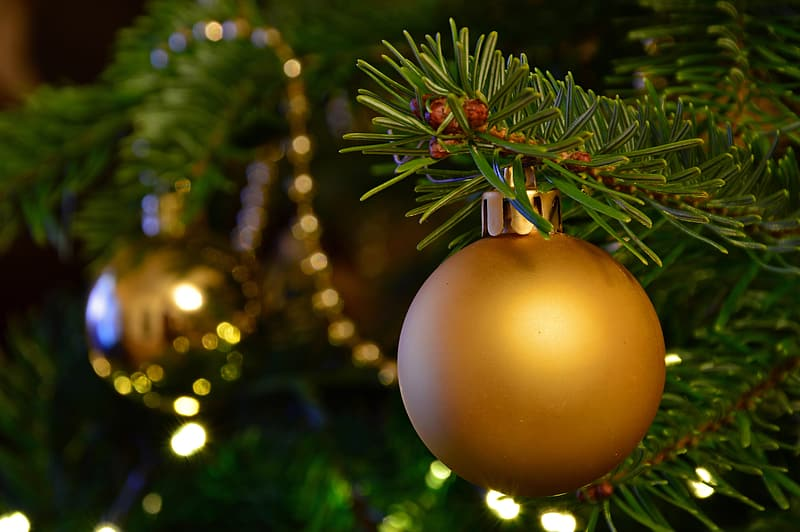 Yellow and orange christmas baubles on green pine tree