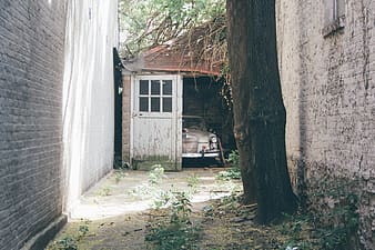 Vintage white car inside of opened garage by the alley