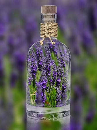Clear glass cork bottle filled with lavender