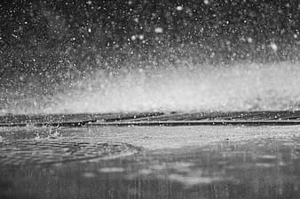 Greyscale photography of rain drops