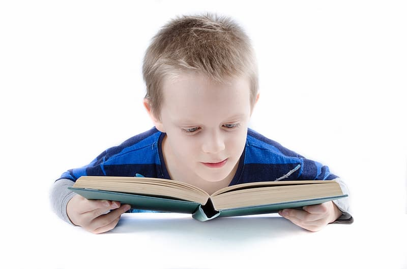 Boy in blue and gray long-sleeved shirt reading book
