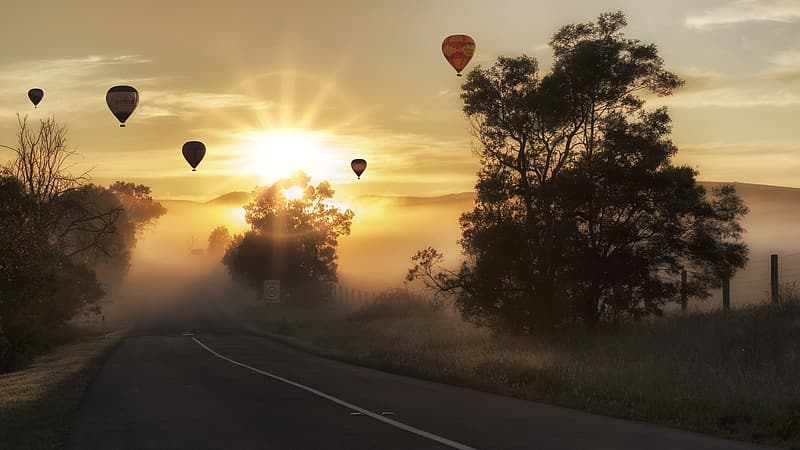 Hot air balloons near concrete road and trees at golden hour