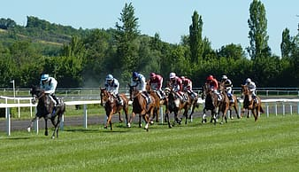 People horse racing at daytime