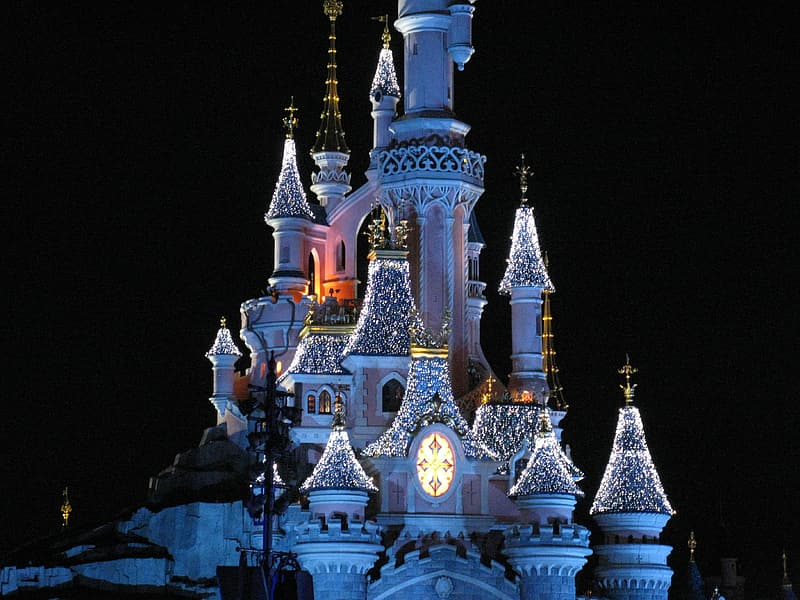 White and blue castle during night time