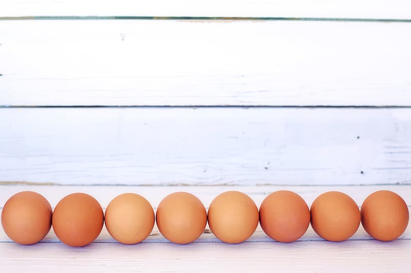 Brown eggs forming line