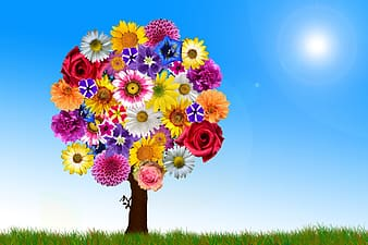 Assorted-colored flower tree at daytime wallpaper