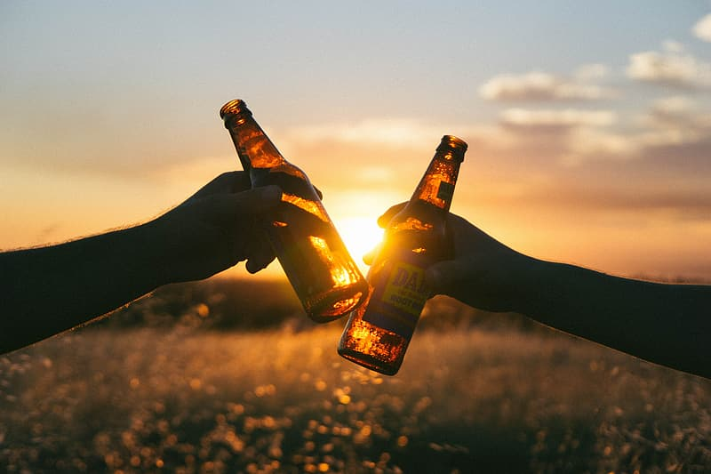 Silhouette photo of two person holding beer bottles