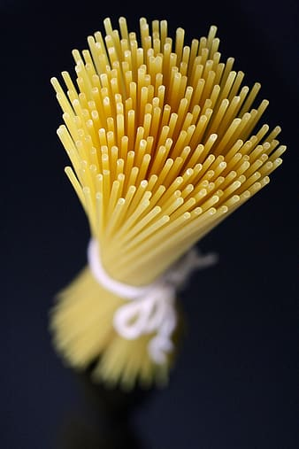 Shallow focus photography of pasta noodle