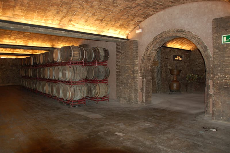 Barrel cellars with turned on light