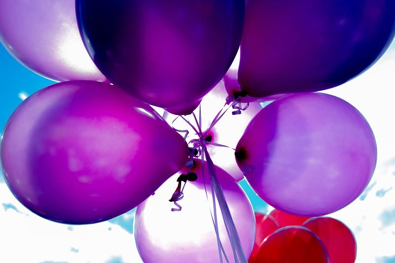 Low angle photography of purple balloons