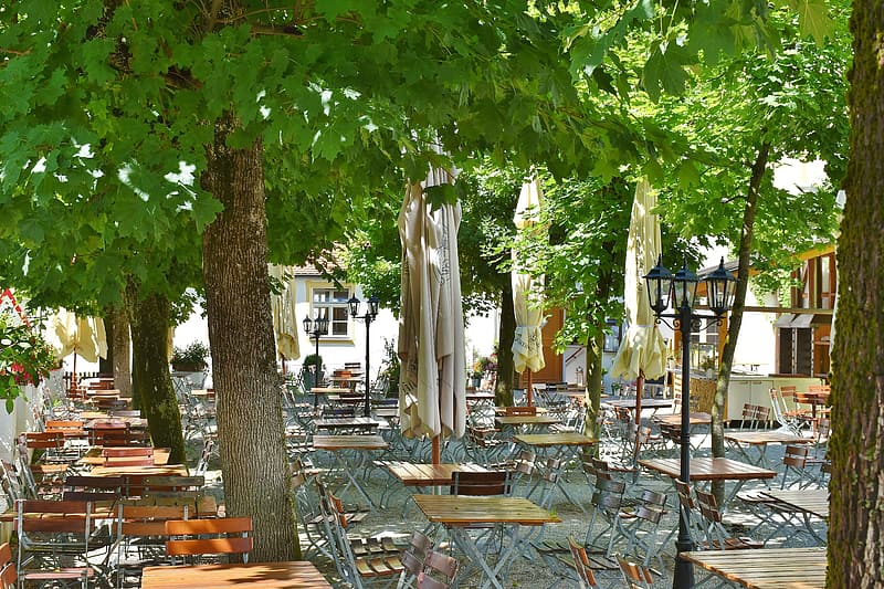 Empty patio sets beside trees during day