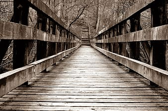 Brown wooden bridge beside trees