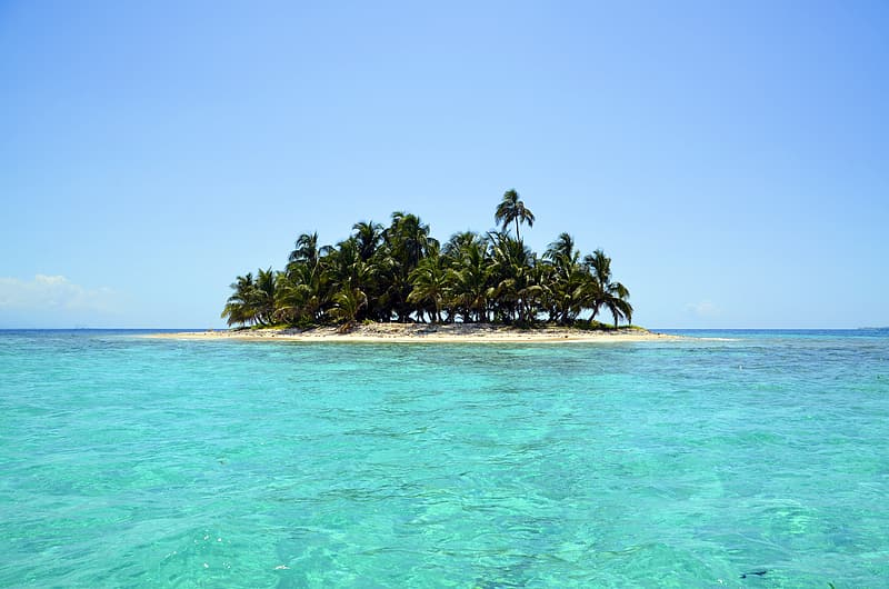 Photography of coconut island