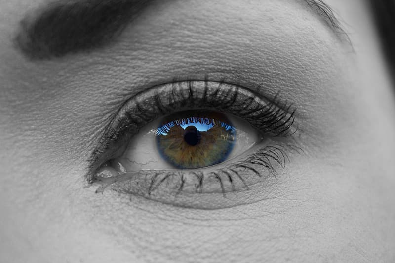 Selective color focus photography of person's eye with blue retina