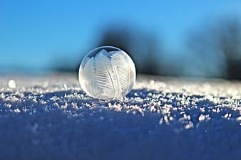 Shallow focus photography of frozen water droplet
