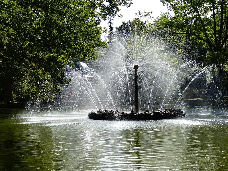 Body of water near trees with fountain