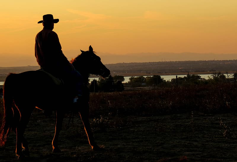 Silhouette of man riding horse
