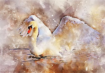 Yellow and white swan painting