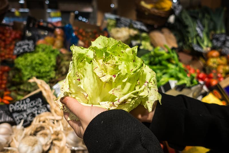 Holding lettuce in a grocery store | Pikrepo